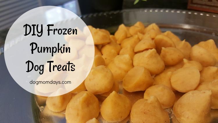 homemade frozen pumpkin dog treats