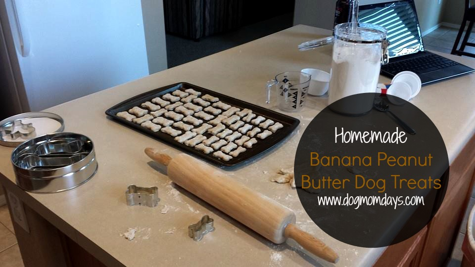 homemade banana peanut butter dog treats