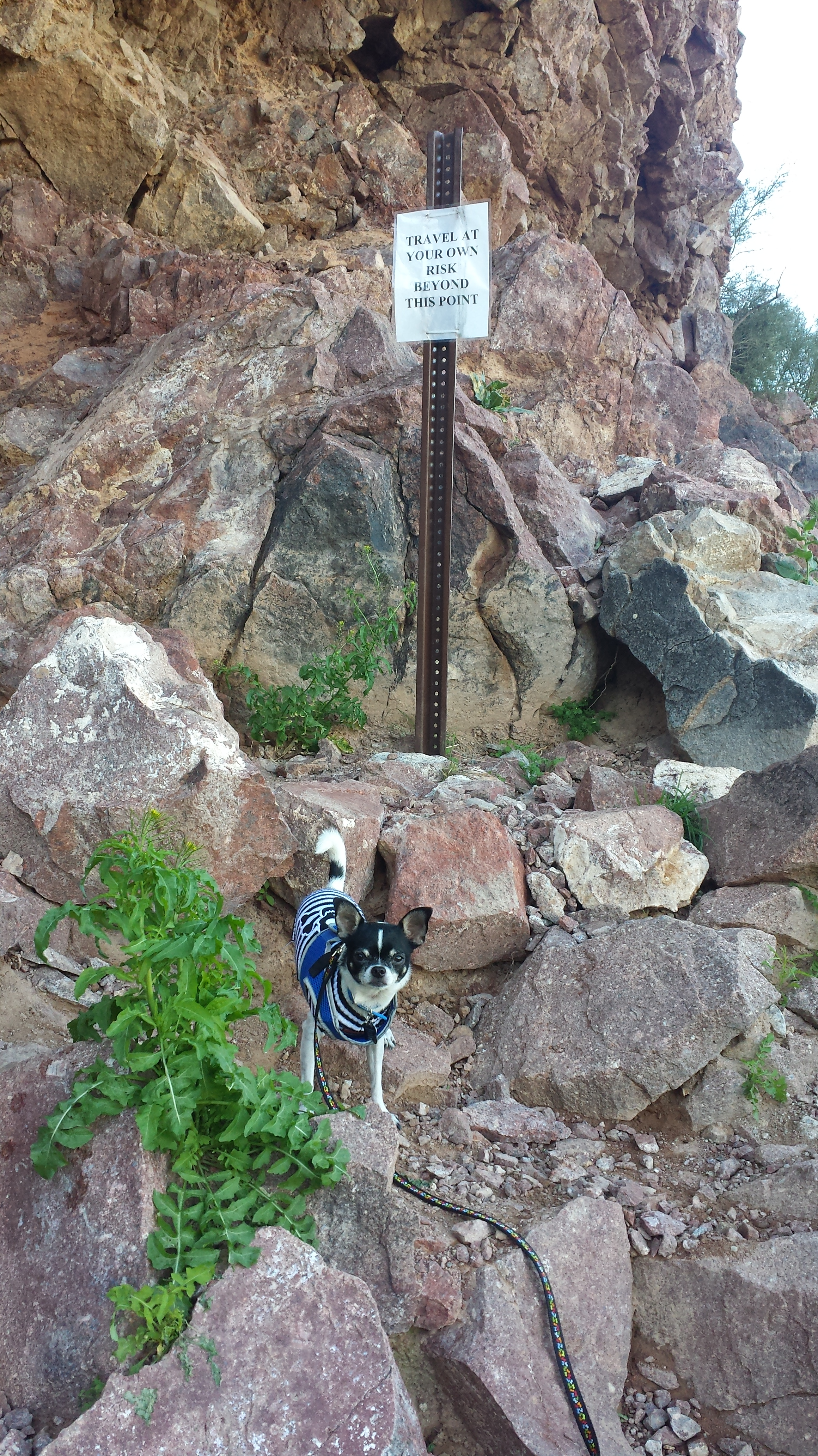 Wordless Wednesday: Our Hike Through the Wind Cave Trail