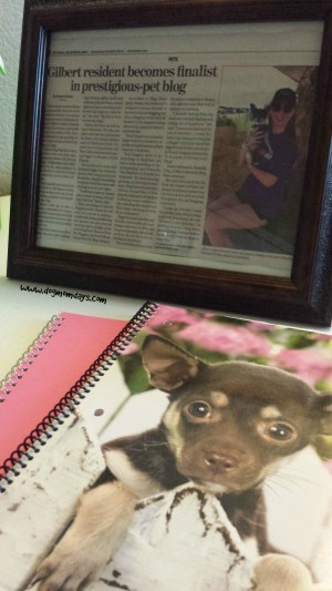 My framed newspaper article and a cute new Chihuahua notebook I bought! I love handwriting notes for myself.