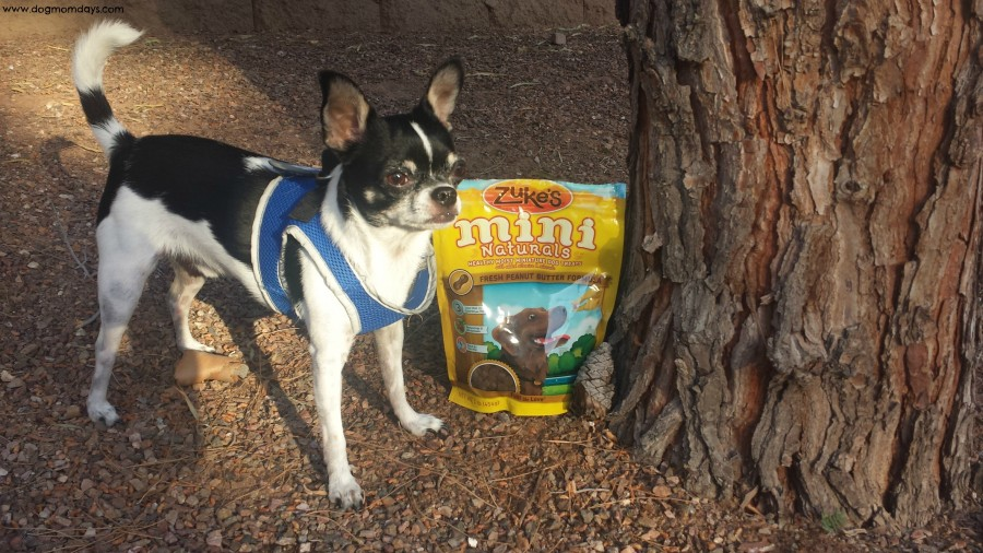 Product Review: Zuke's Mini Naturals
