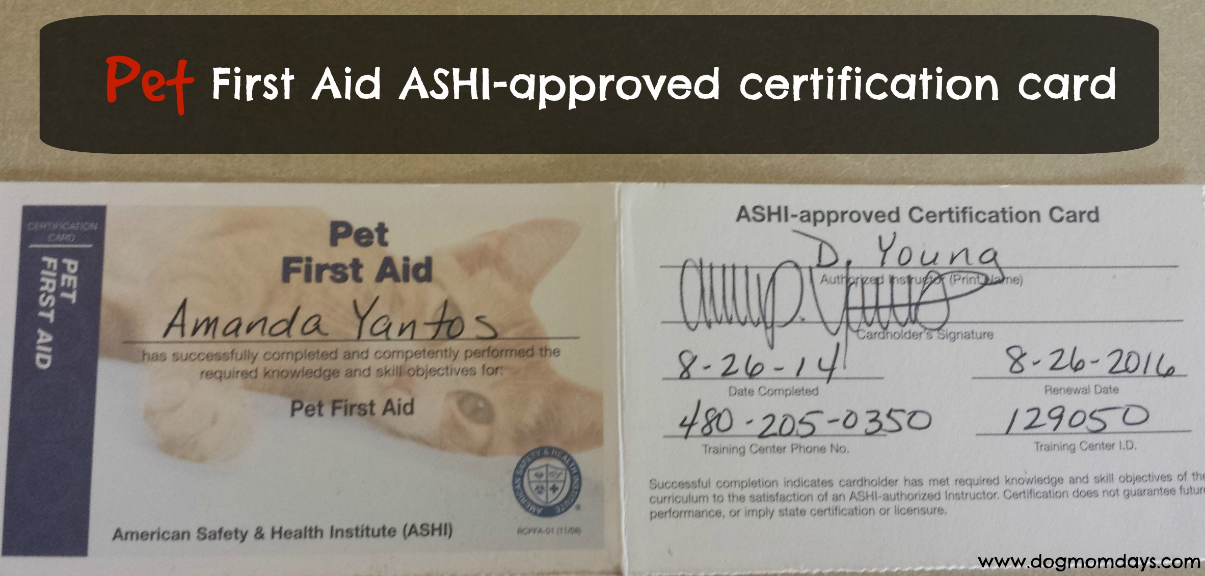 National pet first aid awareness month becoming certified in my pet first aid ashi approved certification card i carry it in my wallet xflitez Images