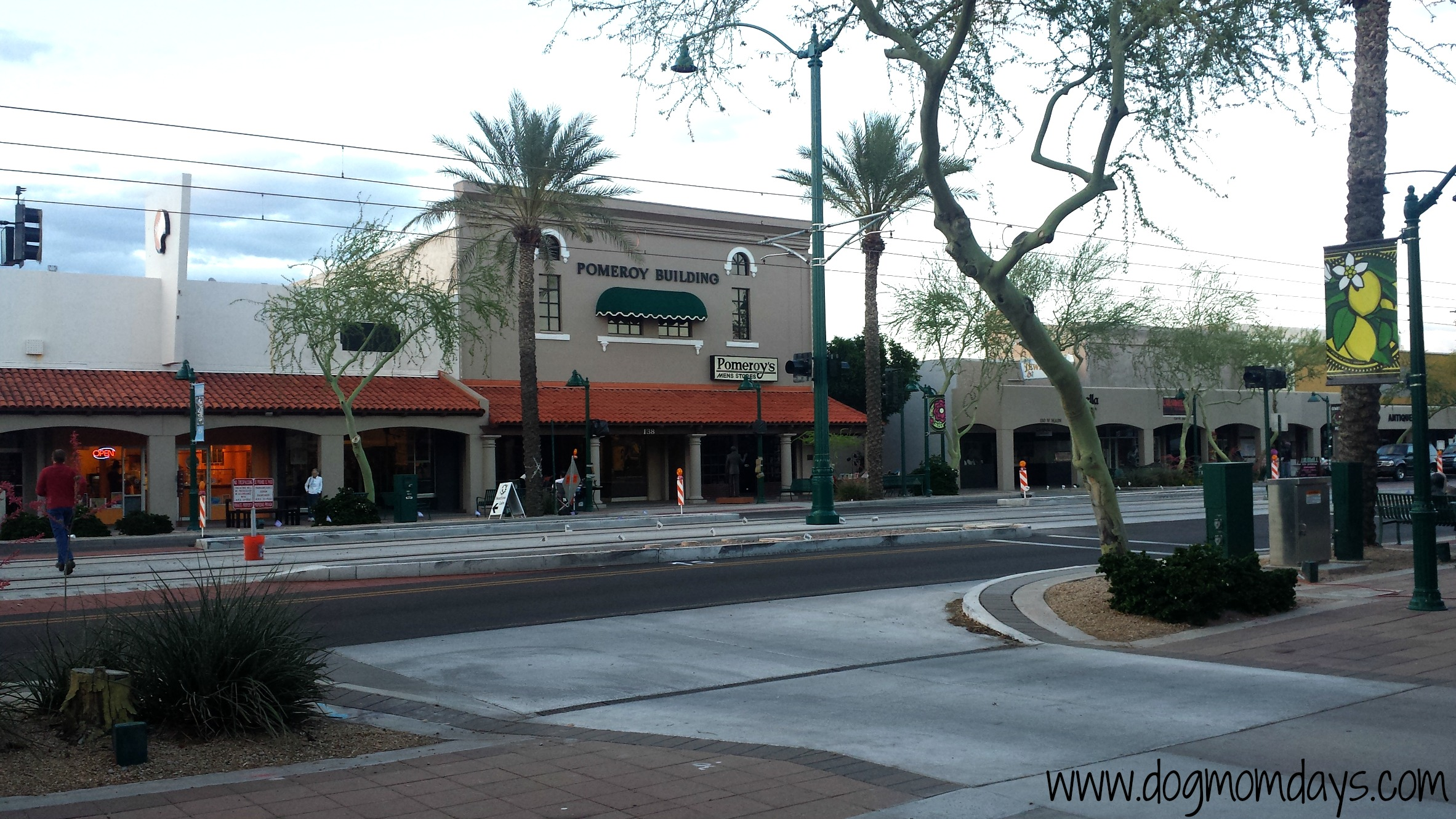 A portion of Downtown Mesa.