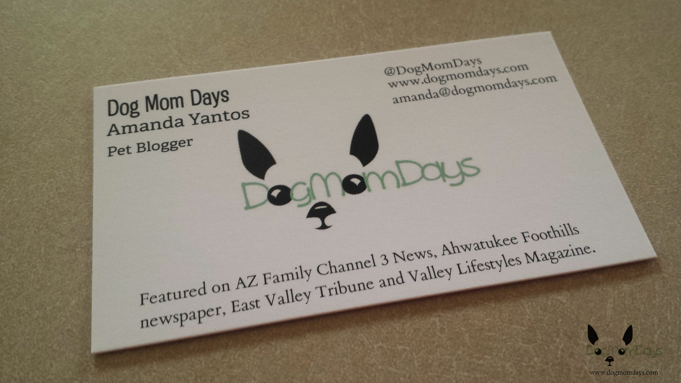 My small business cards.  I ordered two styles and sizes, but these have my media honors on them!