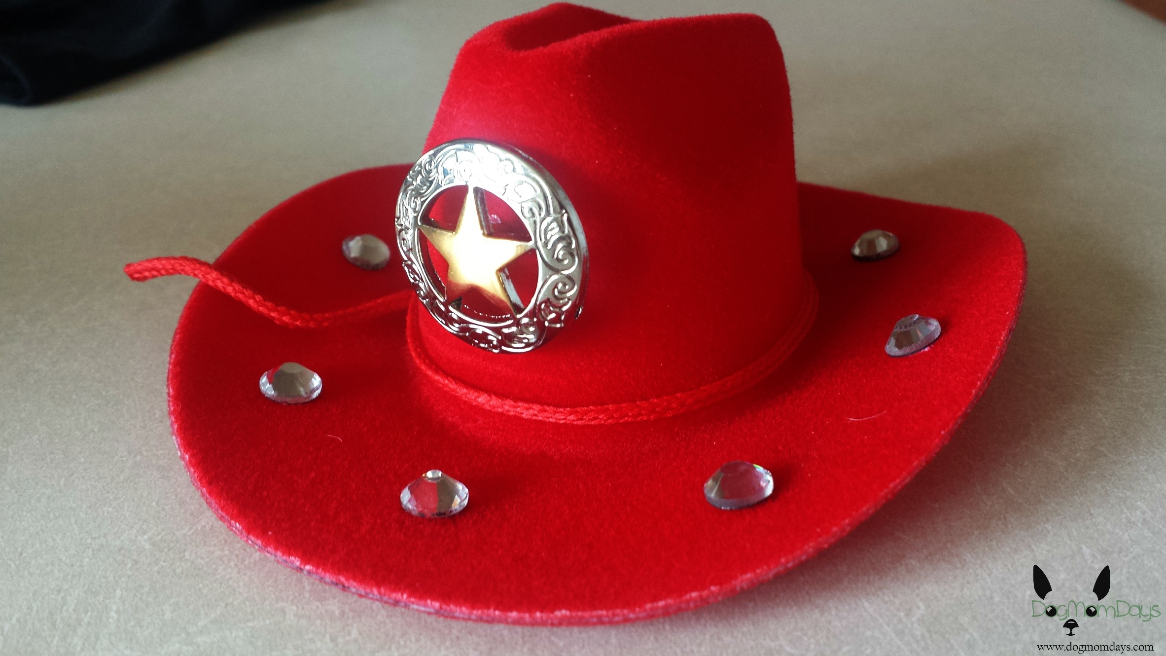 The finished cowboy hat.