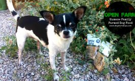 Product Review: Open Farm Dog Food