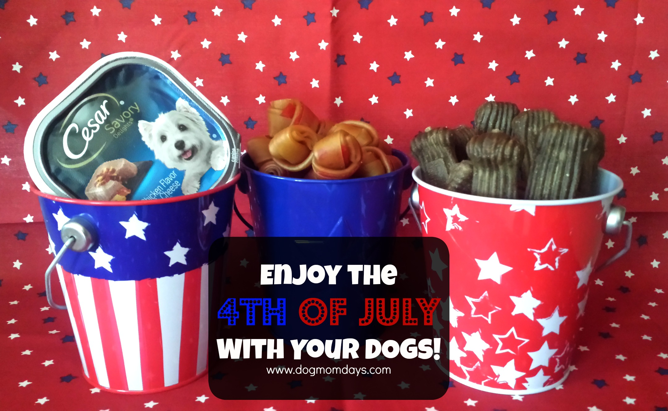 4th of July dog safety