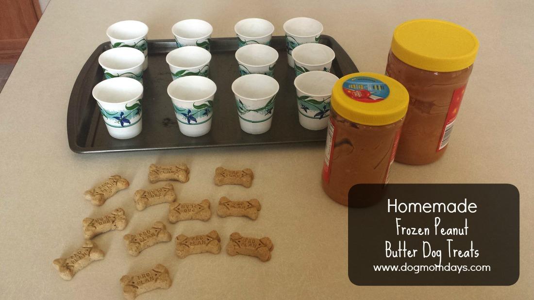 Recipe: Frozen Peanut Butter Dog Treats