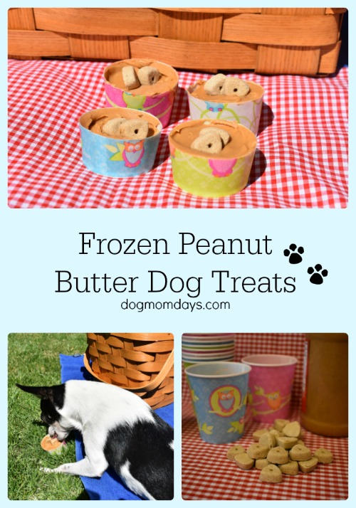 frozen peanut butter dog treats