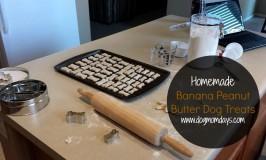 Recipe: Homemade Banana Peanut Butter Dog Treats