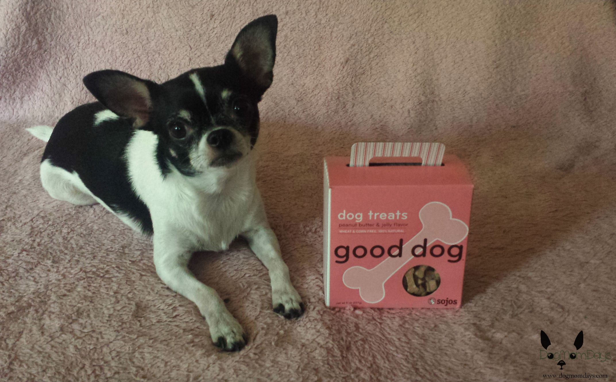 Sojos Good Dog dog treats