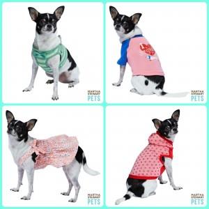 Chihuahua clothes PetSmart