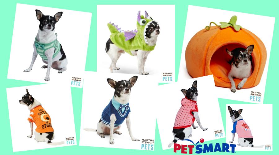 PetSmart Modeling
