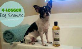 Get a Leg Up on Bath Time with 4-Legger Dog Shampoo!
