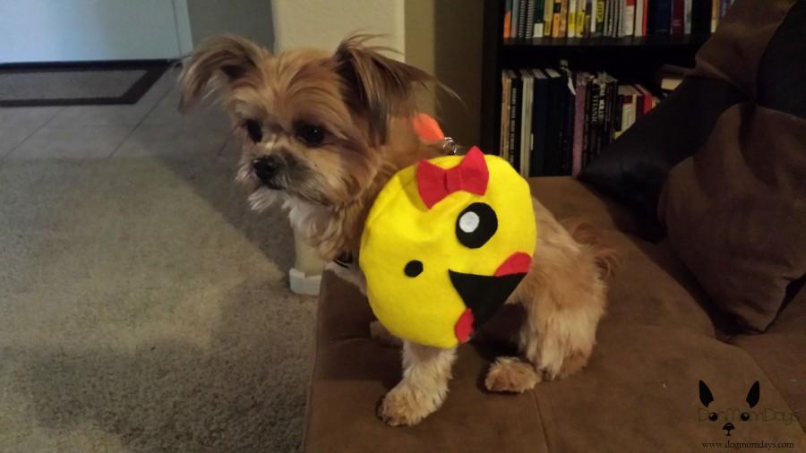 dog PacMan