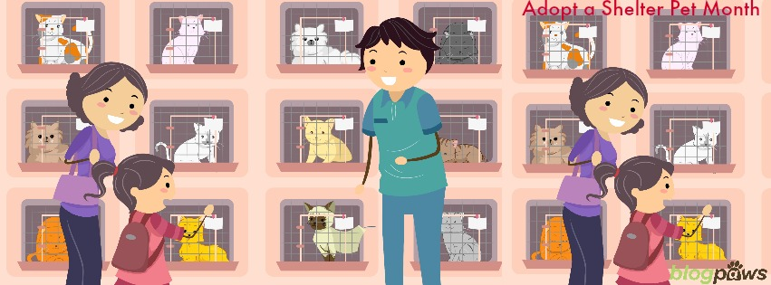 BlogPaws adopt a shelter pet month