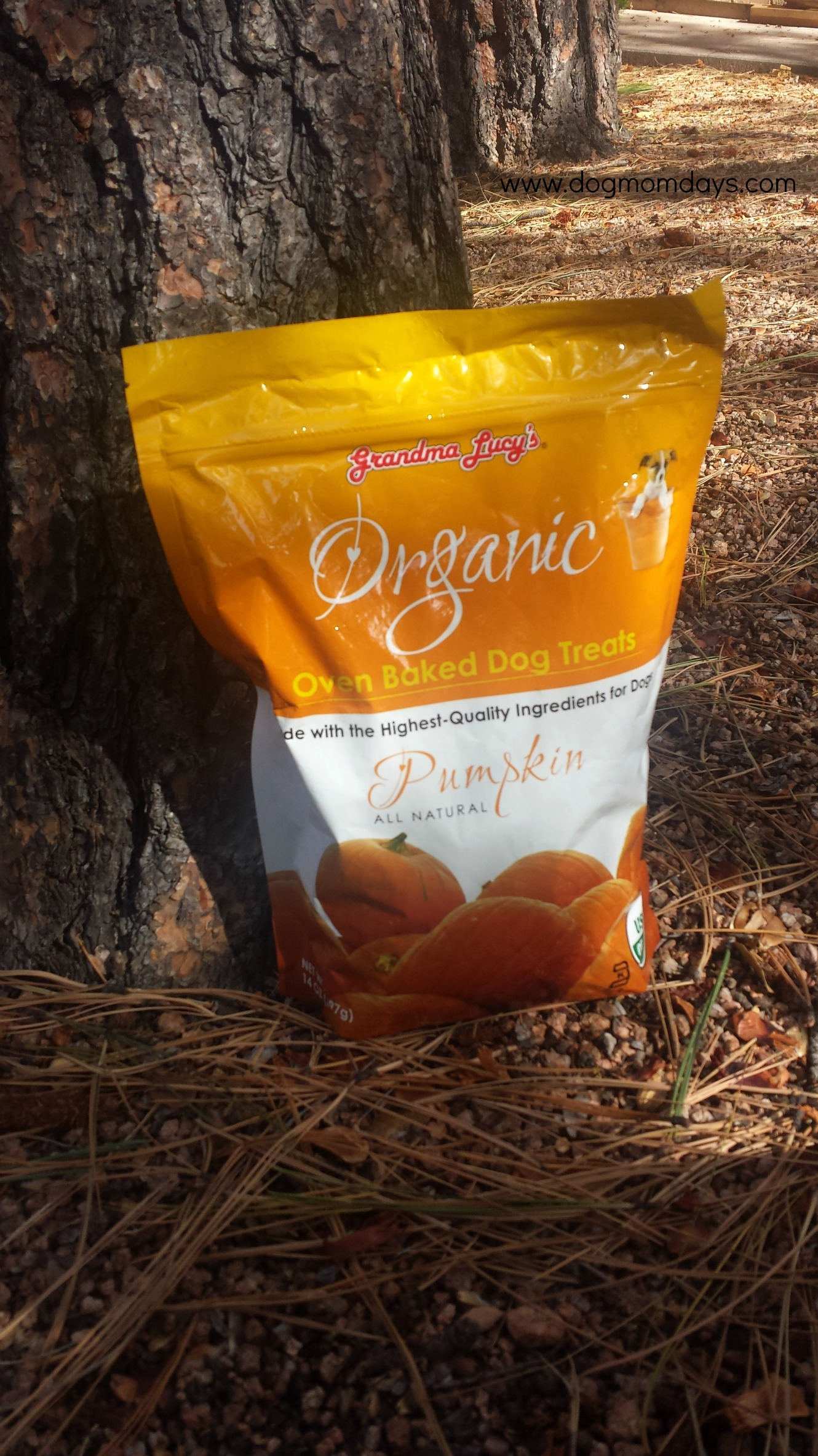 Grandma Lucy's Organic Baked Dog Treats product review
