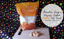 Product Review: Grandma Lucy's Organic Baked Pumpkin Dog Treats