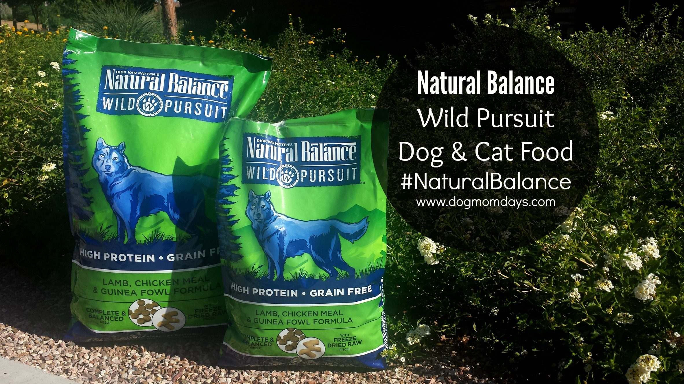 This post is sponsored by Natural Balance, and the BlogPaws Professional Pet Blogger Network. I am being compensated for helping spread the word about Natural Balance Wild Pursuit, but Dog Mom Days only shares information we feel is relevant to our readers. Natural Balance is not responsible for the content of this article.