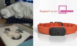 The Nuzzle Smart Collar