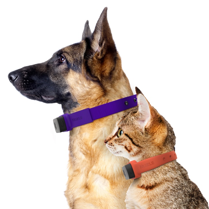 The Nuzzle Smart GPS Collar