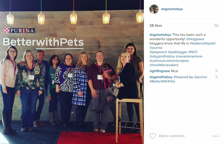 #BetterWithPets