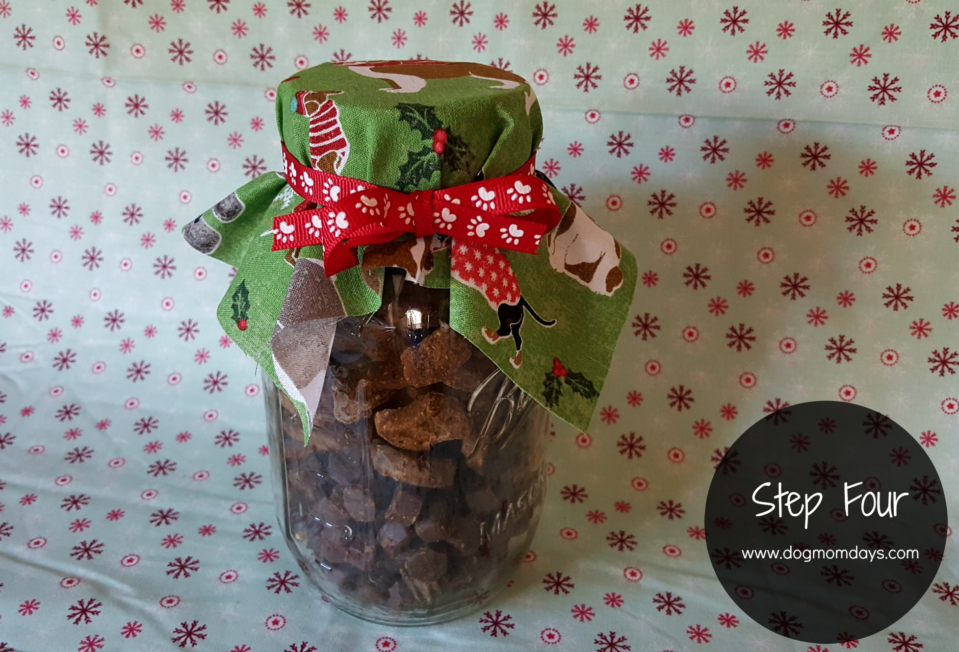 DIY Natural Balance Treat Jar