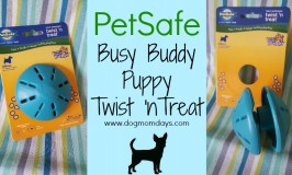 PetSafe Busy Buddy Puppy Twist 'n Treat dog toy