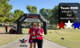 Supporting Team RWB for Veteran's Day!