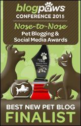 Best New Pet Blog