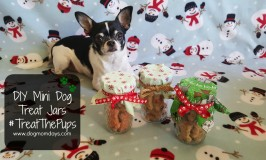 #TreatThePups This Year With DIY Mini Dog Treat Jars!