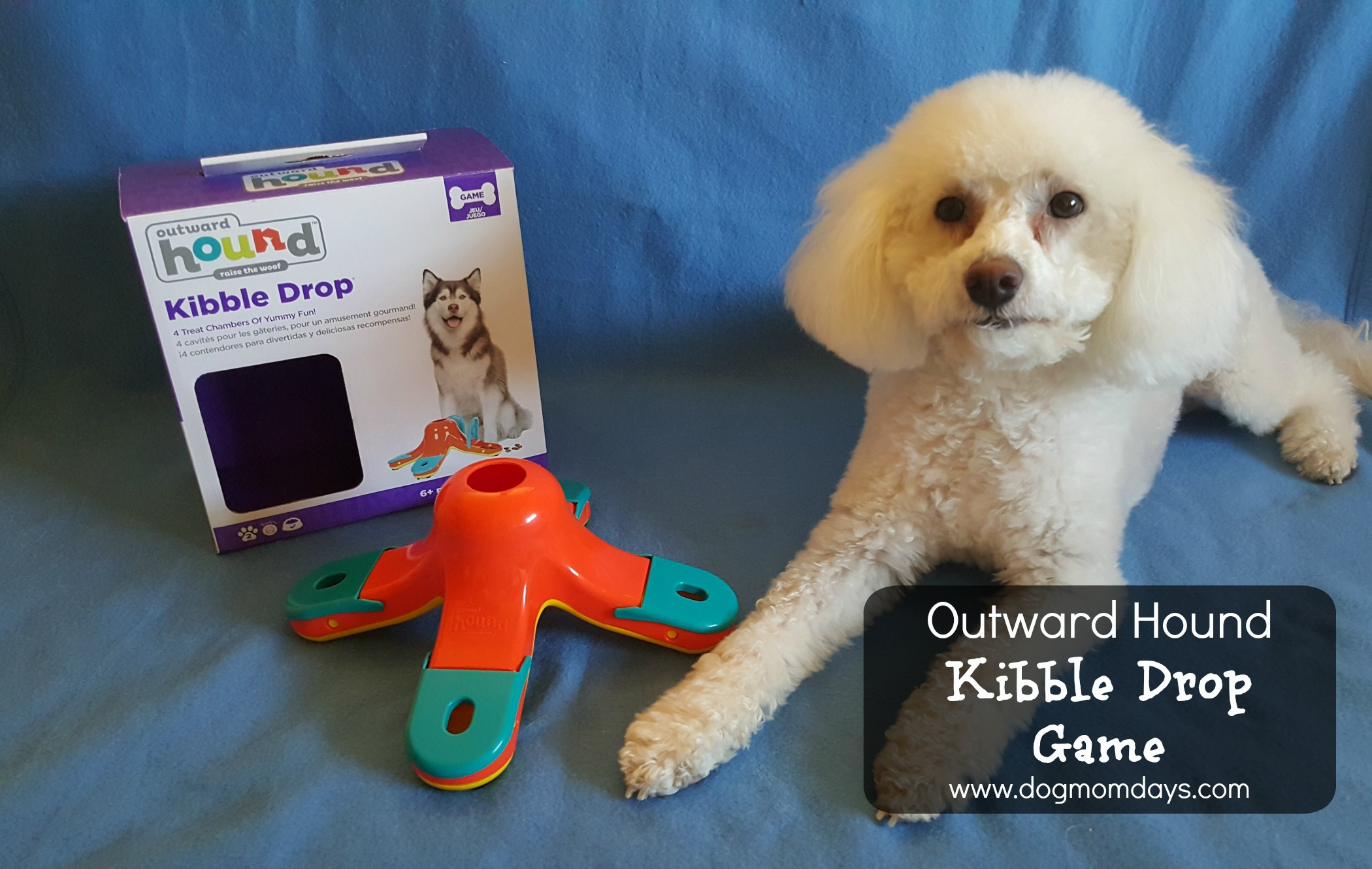 Outward Hound kibble drop game for dogs