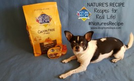 Nature's Recipe dog food #NaturesRecipe