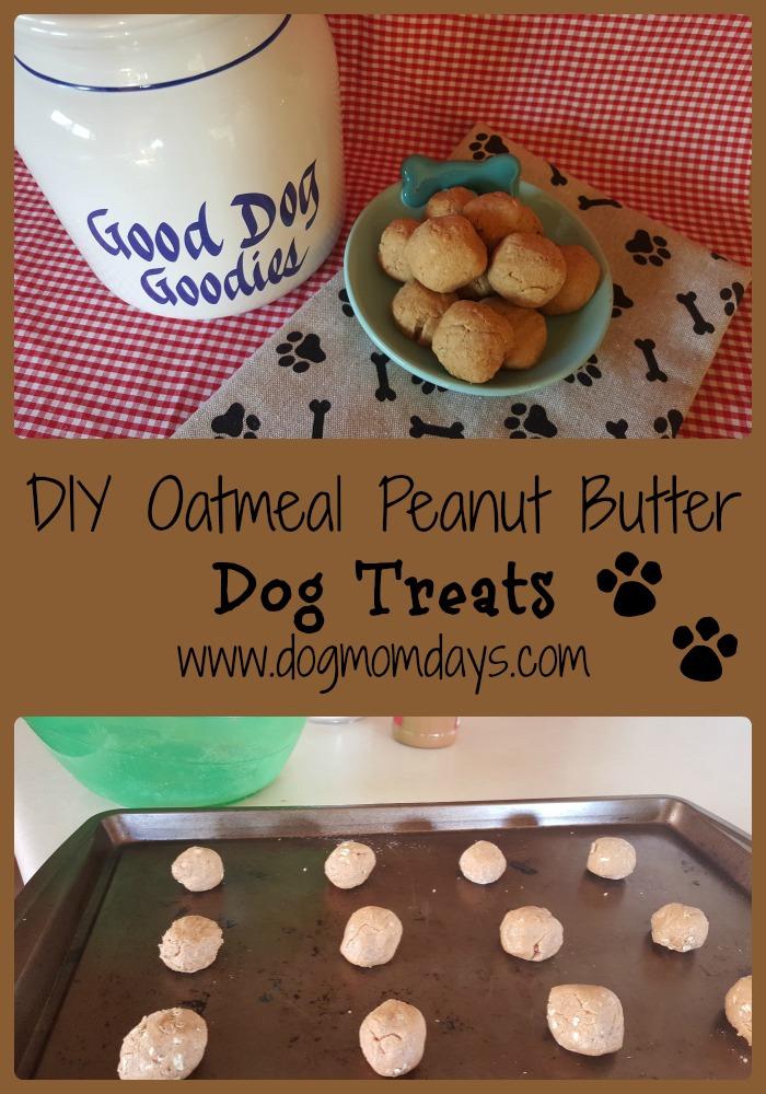 DIY oatmeal peanut butter dog treats