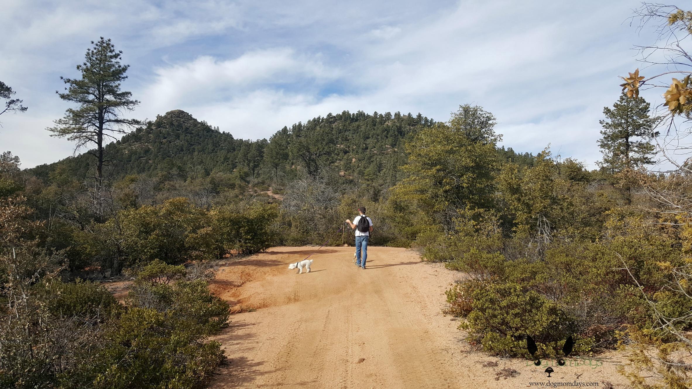 Monument Peak Loop Trail