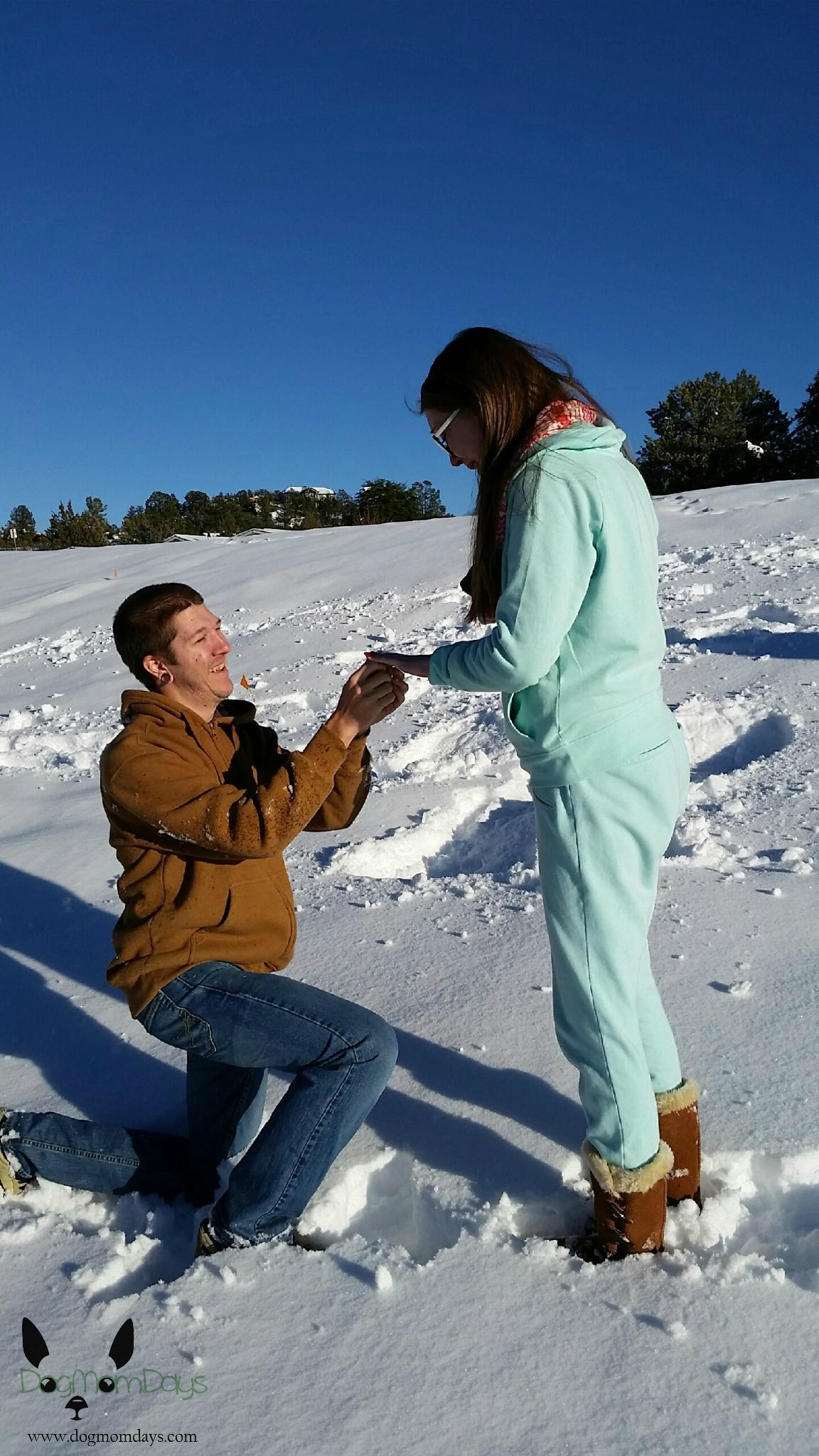 wedding proposal in the snow