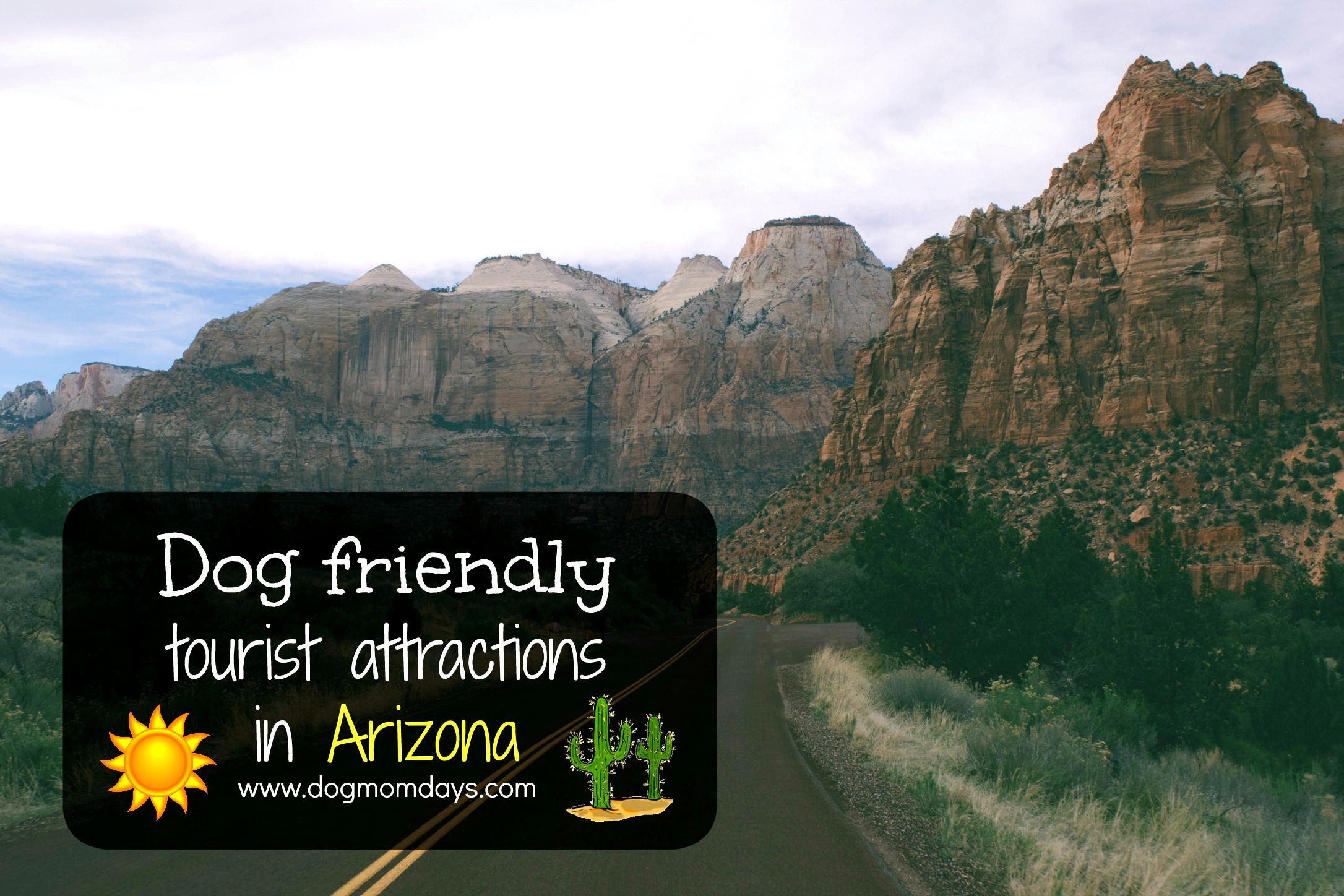 dog friendly tourist attractions in Arizona