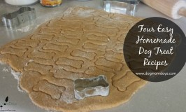 Four Easy Homemade Dog Treat Recipes