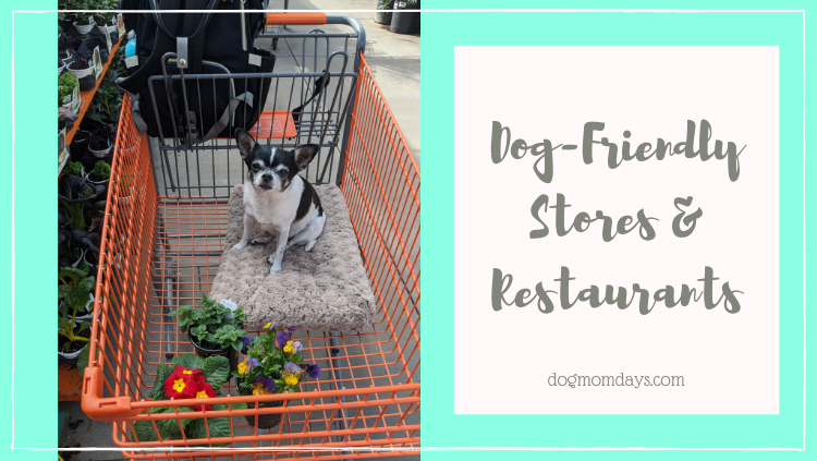 dog-friendly stores and restaurants
