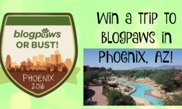 Wordless Wednesday: BlogPaws or Bust