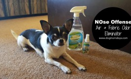 NOse Offense, but you NEED this odor eliminator!