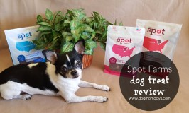Product Review and Giveaway: Spot Farms Dog Treats