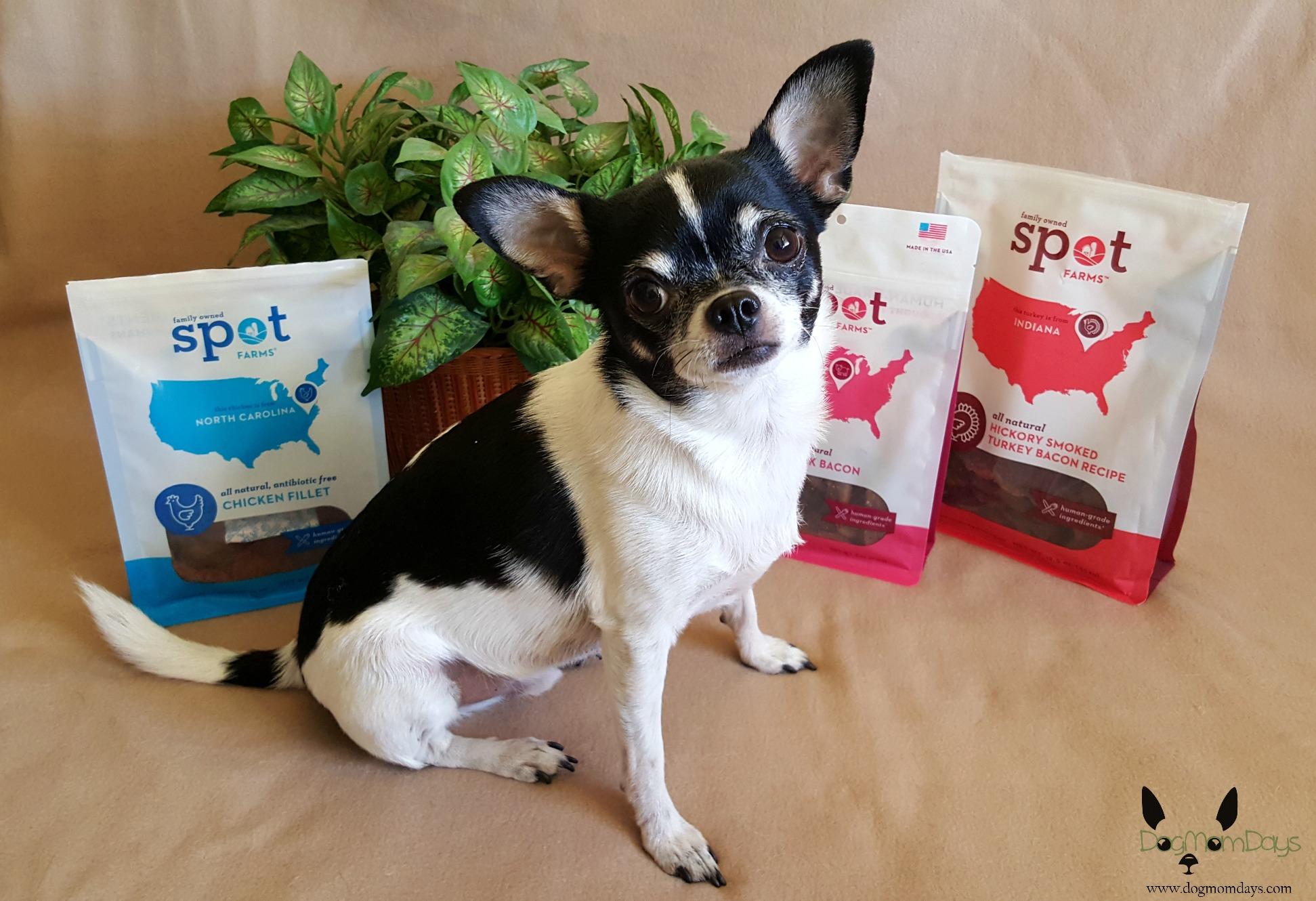 Spot Farms dog treats