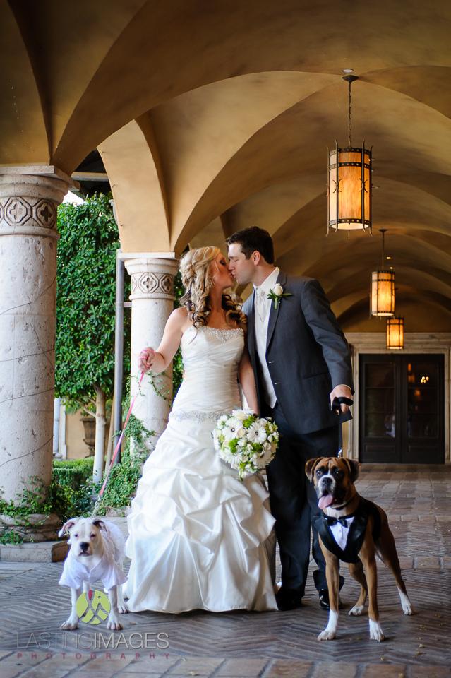 Villa Siena wedding with dogs