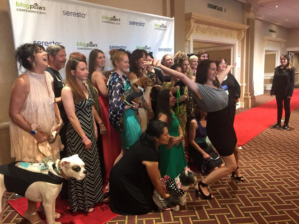5 Types of People Who Should Attend the BlogPaws Conference