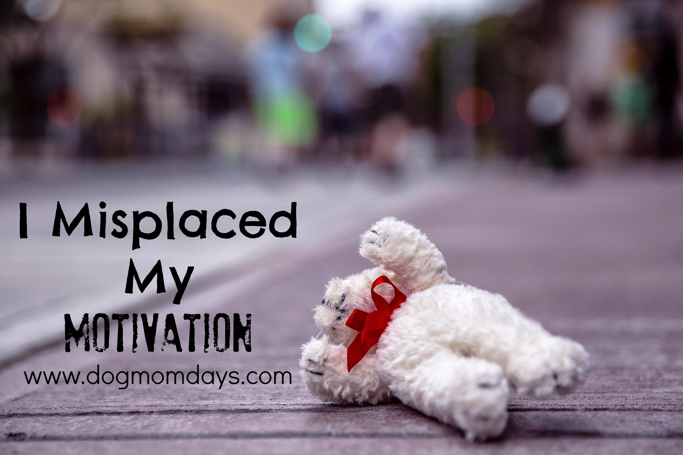 I misplaced my motivation