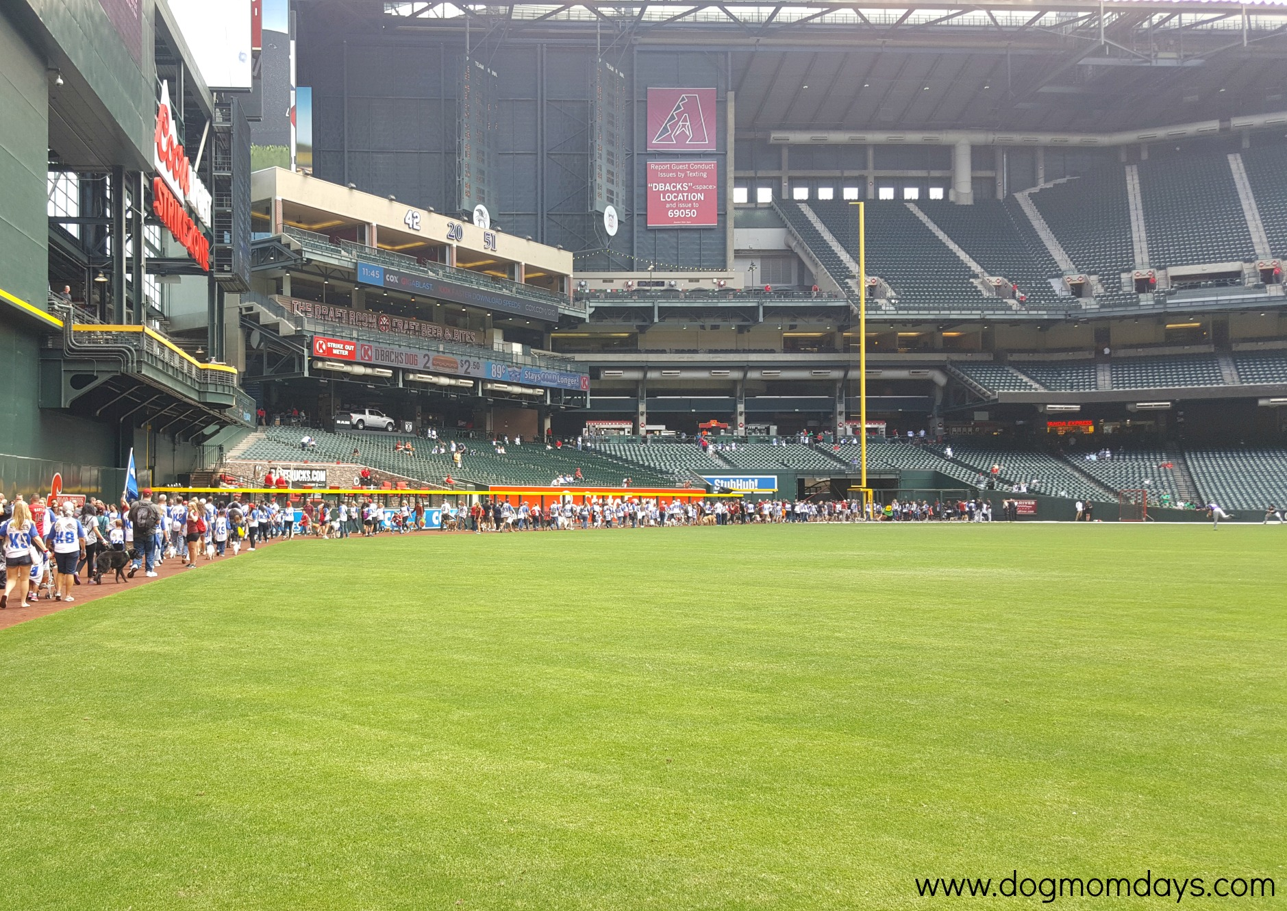Celebrating May with 'Bark at the Park' at Chase Field - Dog