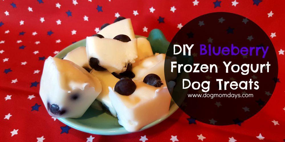 DIY blueberry frozen dog treats