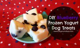 DIY Blueberry Frozen Yogurt Dog Treats