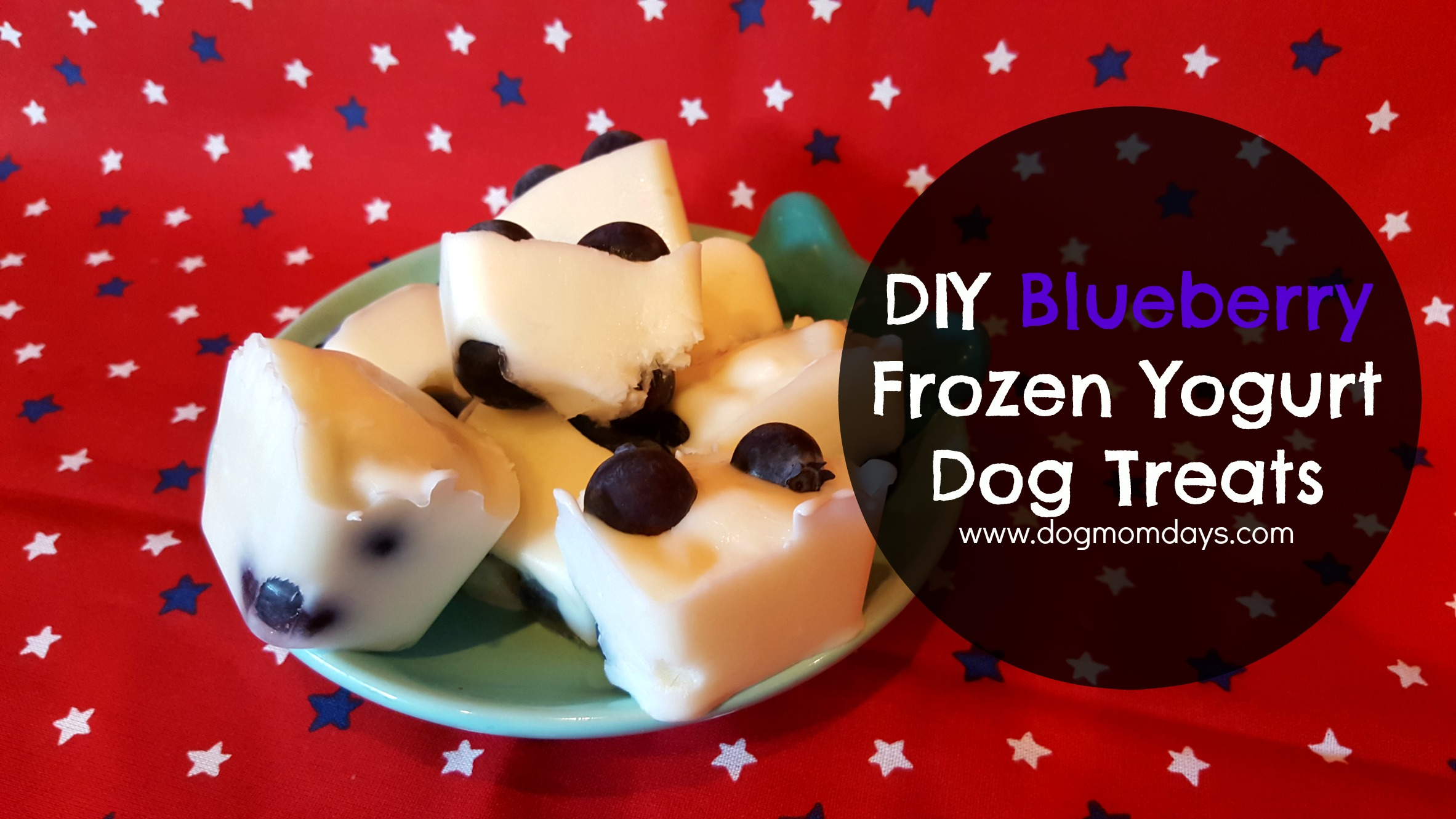 DIY blueberry frozen yogurt dog treats